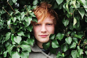 Sheeran-Bump-Lyrics