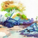 Name: Mangroves in Surin island/ Technique :Watercolor /size :58 x 48cm /Price : 235 usd.